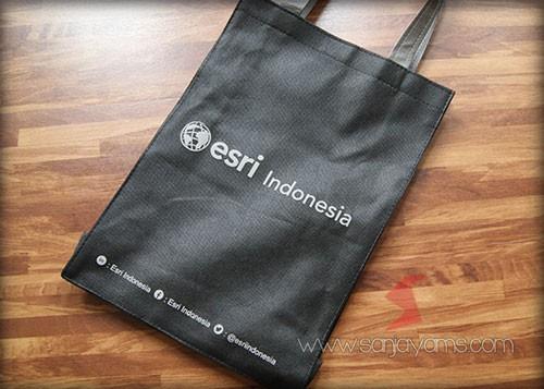 Logo - Esri Indonesia