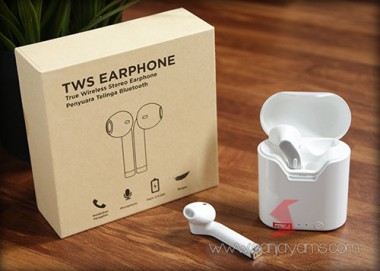 TWS Earphone (TWS01)