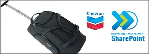 Travel Bag Chevron